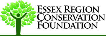 Essex Region Conservation Authority company
