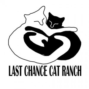 Last Chance Cat Ranch